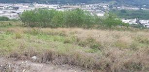 Prefeitura do Rio inicia estudos para implantação de fazenda solar