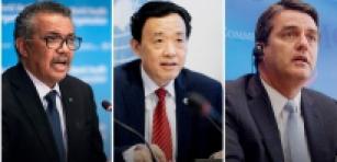 FAO, OMS e OMC: Atenuar os efeitos do Covid-19 no comércio e nos mercados de alimentos