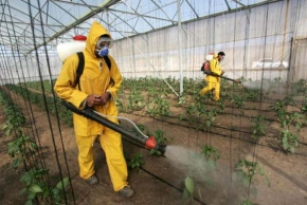 Governo Bolsonaro bate o próprio recorde: 2020 é o ano com maior aprovação de agrotóxicos da história
