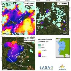 Queimadas no Pantanal devastaram área equivalente a 444 campos de futebol por hora em 2020