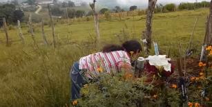 Relatório de ONG aponta Brasil como um país perigoso para ativistas ambientais e de Direitos Humanos (em inglês)