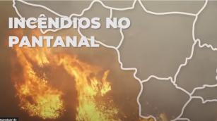 Pantanal em chamas - Edição por Robson Rodrigues