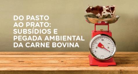 Cadeia da carne bovina recebeu mais de 123 bilhões de reais de dinheiro público e gera forte impacto ambiental
