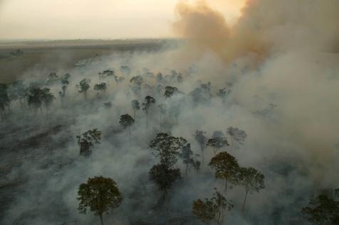 Queimadas na Amazônia aumentam  problemas respiratórios