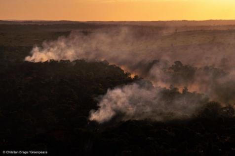 Fogo na Amazônia: Junho registra maior número de focos de calor dos últimos 14 anos