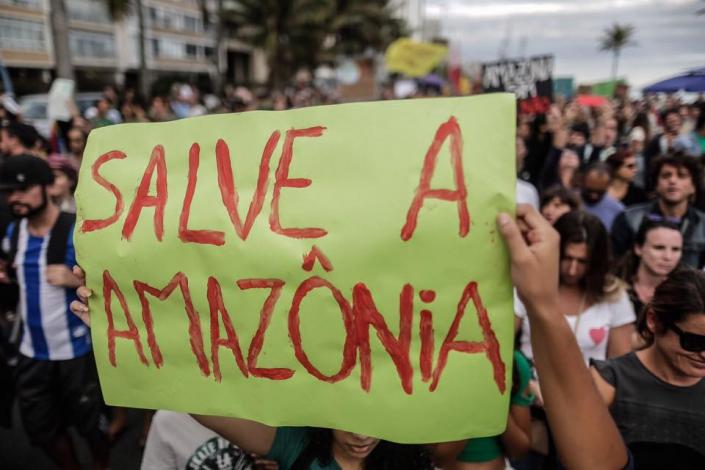 Ato em defesa da Amazônia na Praia de Ipanema _ Fotos do 342.amazonia