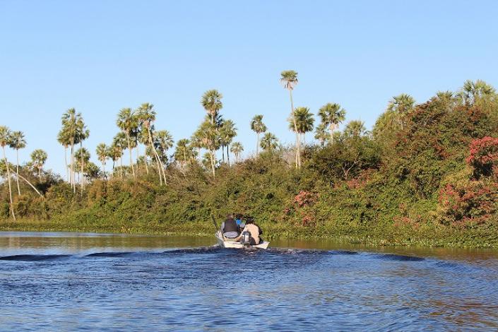 Exposição virtual de fotos mostra vida, morte e renascimento do Pantanal após as queimadas. Rio Paraguai - Foto de Tatiana Gallupp