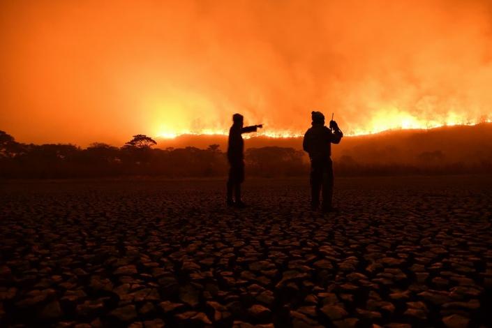 Exposição virtual de fotos mostra vida, morte e renascimento do Pantanal - Durante as queimadas - Foto de André Zumak - Brasil