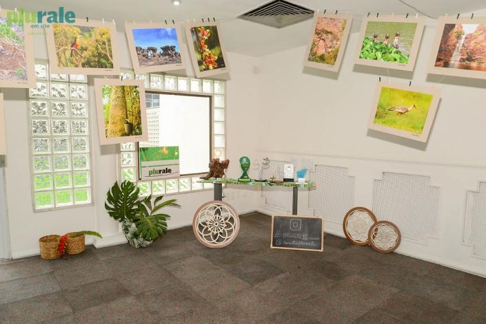 Decoração sustentável marcou a Exposição de Fotos de LUCIANA TANCREDO - #PURALE12ANOS
